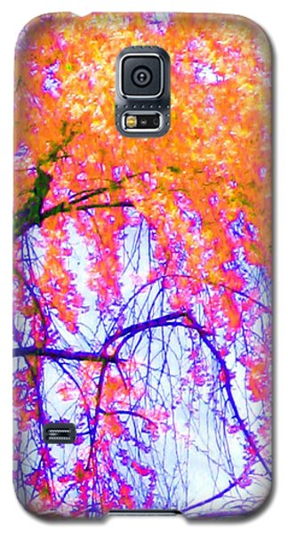 Galaxy S5 Case featuring the photograph Spring Alive by Susan Carella