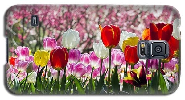 Spring Galaxy S5 Case by Angela DeFrias