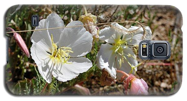 Spring At Last Galaxy S5 Case