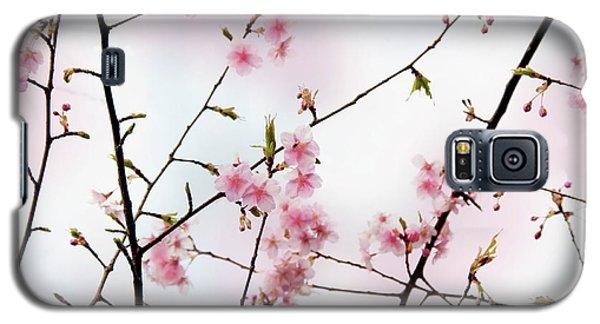 Spring Awakening Galaxy S5 Case