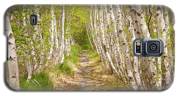 Spring Birch Galaxy S5 Case
