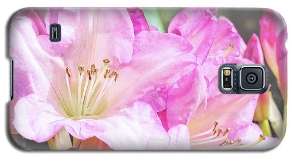 Spring Bling Galaxy S5 Case