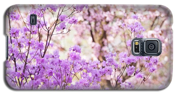 Galaxy S5 Case featuring the photograph Spring Bloom Of Rhododendron  by Jenny Rainbow