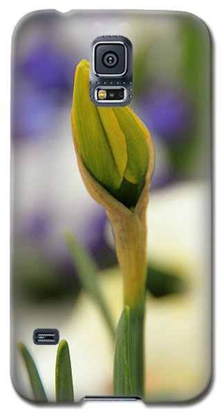 Galaxy S5 Case featuring the photograph Spring Blooms In The Snow by Chris Berry