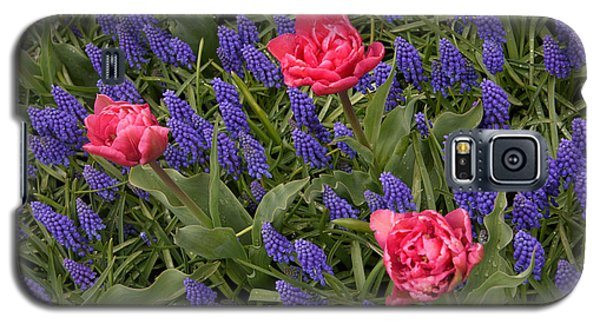 Galaxy S5 Case featuring the photograph Spring Blooms by Phyllis Peterson