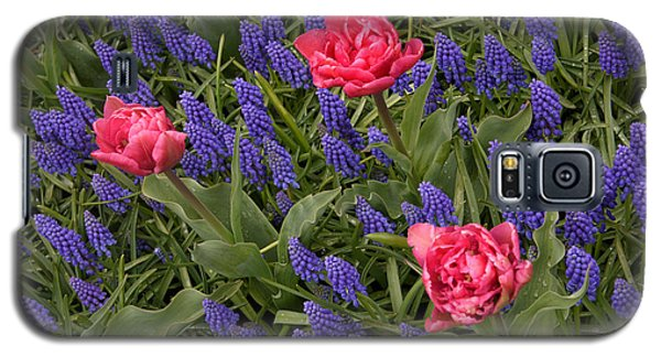 Spring Blooms Galaxy S5 Case by Phyllis Peterson