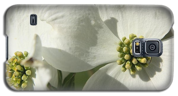Galaxy S5 Case featuring the photograph Spring Blossoms by Diane Merkle
