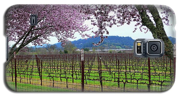 Spring Blossoms Near Calistoga Galaxy S5 Case