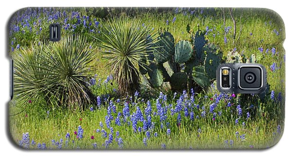Spring Cactus, Yucca And Blue Bonnets Galaxy S5 Case by Linda Phelps