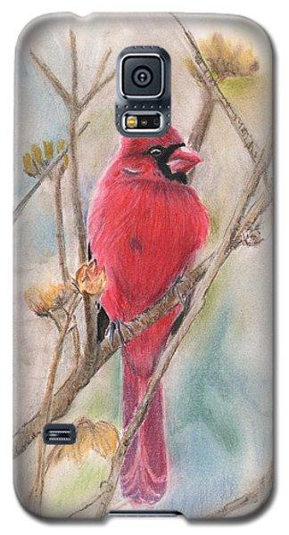 Spring Cardinal Galaxy S5 Case