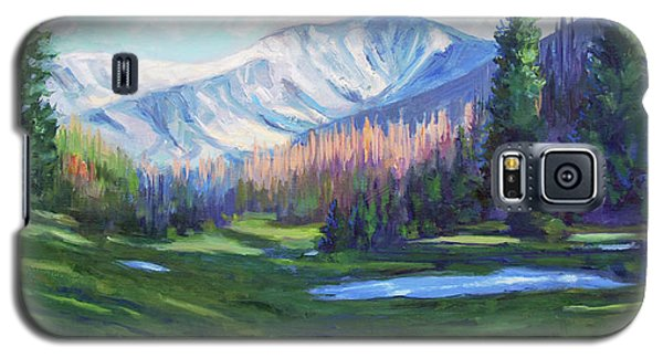 Spring Colors In The Rockies Galaxy S5 Case by Billie Colson
