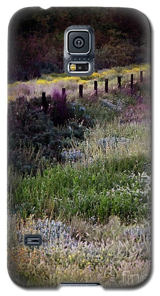 Galaxy S5 Case featuring the photograph Spring Colors by Kelly Wade