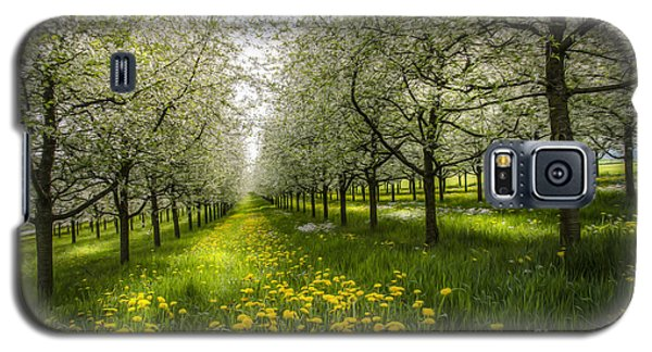 Galaxy S5 Case featuring the photograph Spring Colors1 by Bruno Santoro