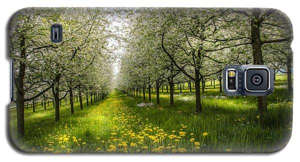 Spring Colors1 Galaxy S5 Case by Bruno Santoro