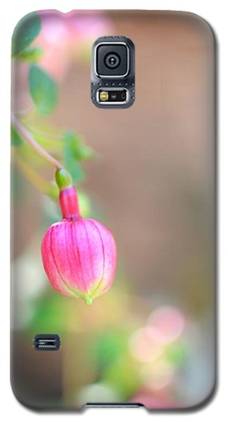 Galaxy S5 Case featuring the photograph Spring Comes To South Carolina by Corinne Rhode