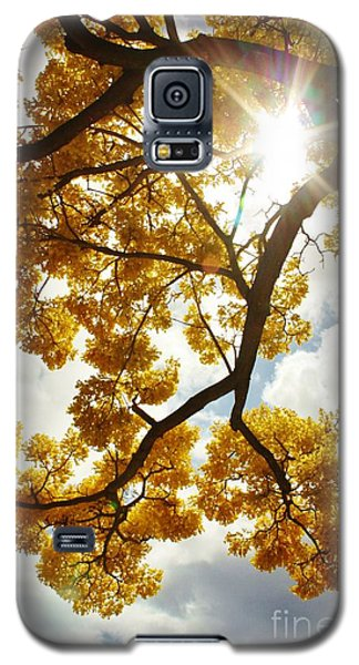 Galaxy S5 Case featuring the photograph Spring by Craig Wood