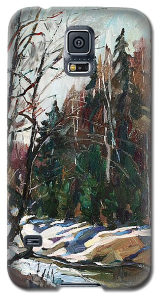 Spring Creek Galaxy S5 Case