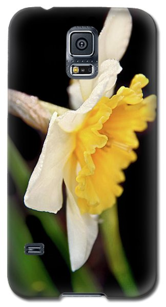 Galaxy S5 Case featuring the photograph Spring Daffodil Flower by Jennie Marie Schell