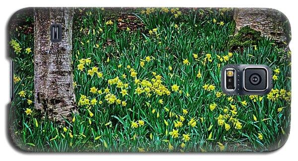 Spring Daffoldils Galaxy S5 Case