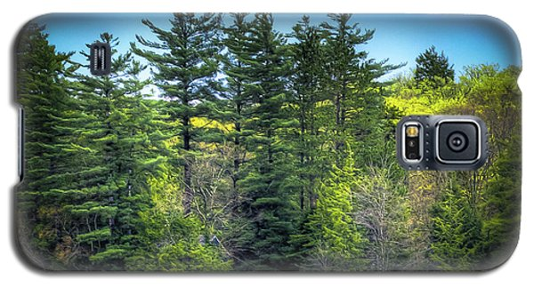Spring Day At Old Forge Pond Galaxy S5 Case by David Patterson