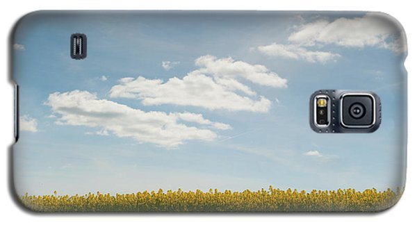 Spring Day Clouds Galaxy S5 Case