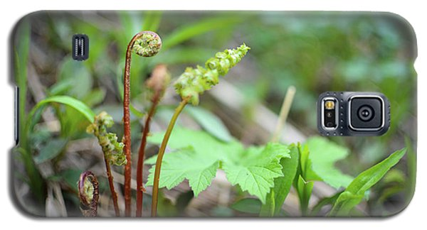 Spring Ferns Galaxy S5 Case