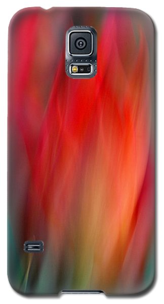 Spring Fling Galaxy S5 Case
