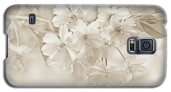 Galaxy S5 Case featuring the photograph Spring Flower Blossoms Soft Brown by Jennie Marie Schell