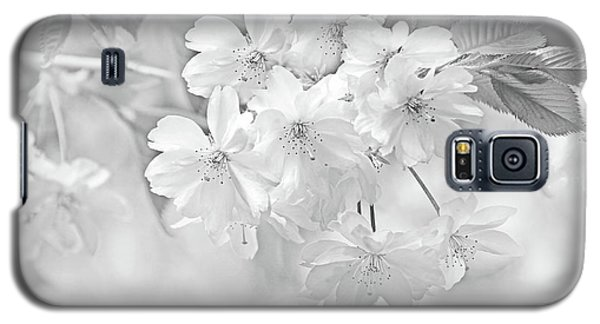 Galaxy S5 Case featuring the photograph Spring Flower Blossoms Soft Gray by Jennie Marie Schell