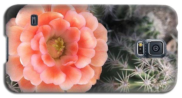 Spring Flower Galaxy S5 Case