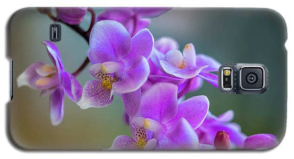Galaxy S5 Case featuring the photograph Spring For You by Marvin Spates