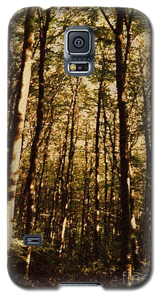 Galaxy S5 Case featuring the photograph Spring Forest by Jean Bernard Roussilhe