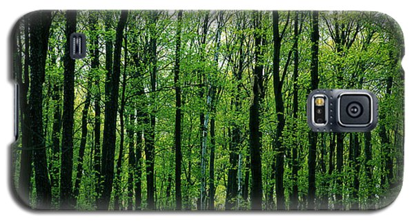 Spring Forest Galaxy S5 Case