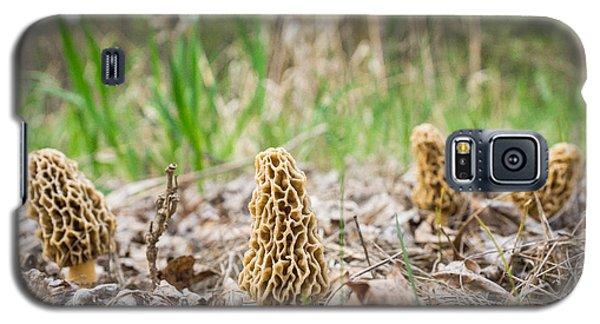 Spring Gathering Galaxy S5 Case