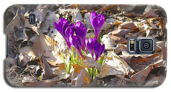 Spring Gathering Galaxy S5 Case