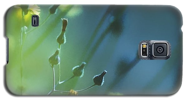 Galaxy S5 Case featuring the photograph Spring Grass by Yulia Kazansky