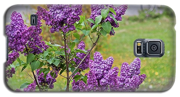 Spring Has Arrived Galaxy S5 Case