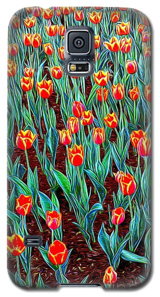 Spring In Holland Galaxy S5 Case by Ian Gledhill