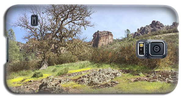 Galaxy S5 Case featuring the photograph Spring In Pinnacles National Park by Art Block Collections