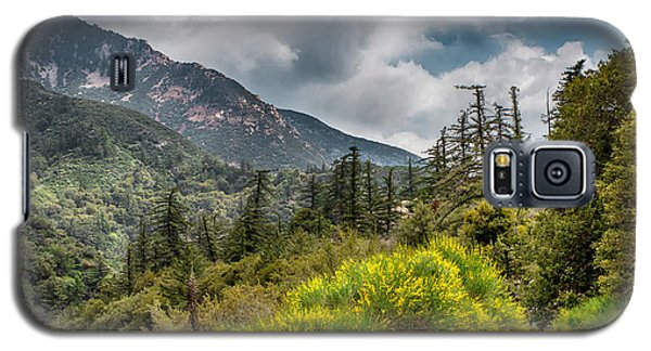 Spring In The Forest Galaxy S5 Case by Joseph Hollingsworth