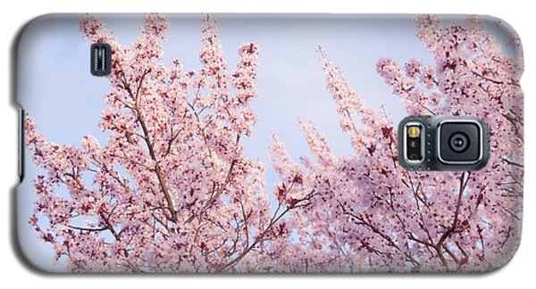 Galaxy S5 Case featuring the photograph Spring Is In The Air by Ana V Ramirez