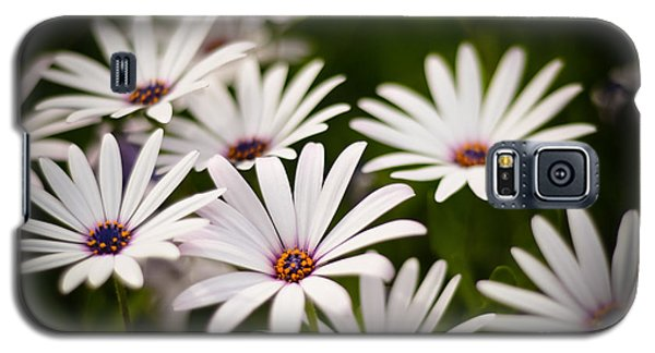 Galaxy S5 Case featuring the photograph Spring Is In The Air by Kelly Wade