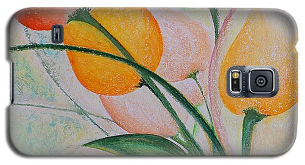 Spring Light Galaxy S5 Case