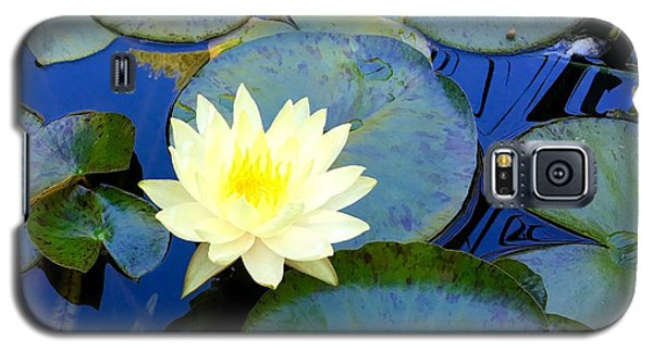 Galaxy S5 Case featuring the photograph Spring Lily by Angela Annas