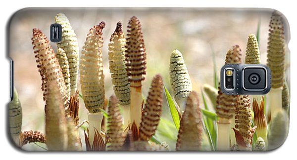 Galaxy S5 Case featuring the photograph Spring Macro4 by Jeff Burgess
