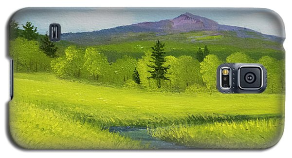 Galaxy S5 Case featuring the painting Spring Meadow Brook by Frank Wilson