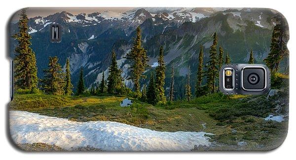 Spring Melt Galaxy S5 Case by Ryan Manuel
