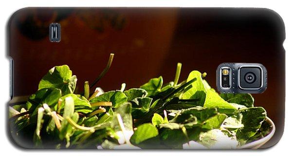 Spring Menu Galaxy S5 Case by Emanuel Tanjala