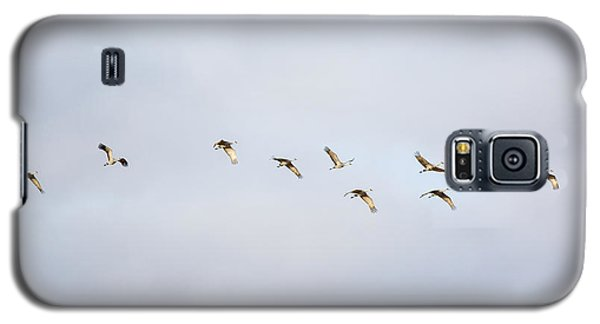 Spring Migration 2 Galaxy S5 Case