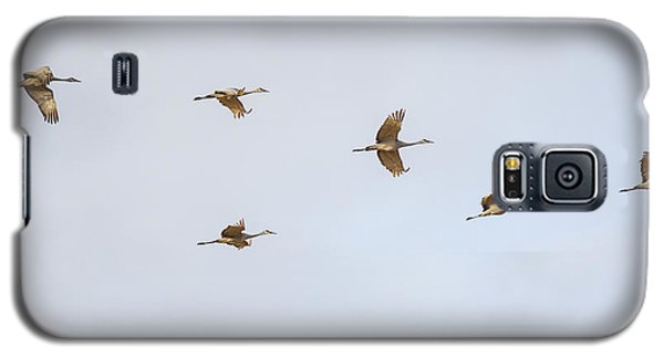 Spring Migration 4 Galaxy S5 Case